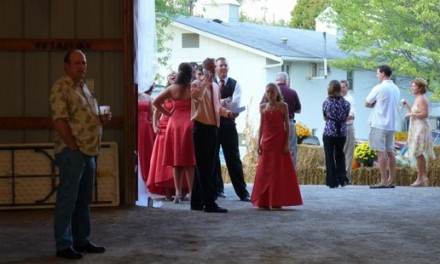 Ideas for a Wedding Party