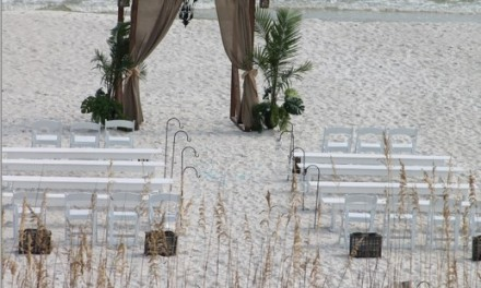 Choosing the best sites for your wedding and reception