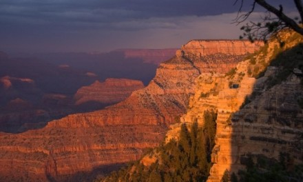 Stage a Grand Canyon Wedding for Unforgettable Memories in an Unforgettable Setting!